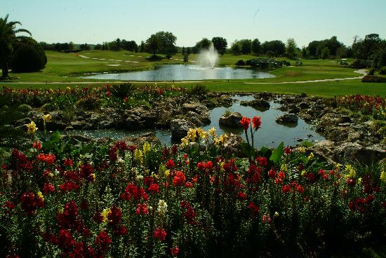 Baseline Golf Course : Flowers