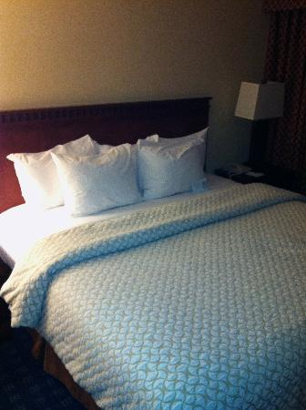 Embassy Suites by Hilton Boston / Waltham: Bed