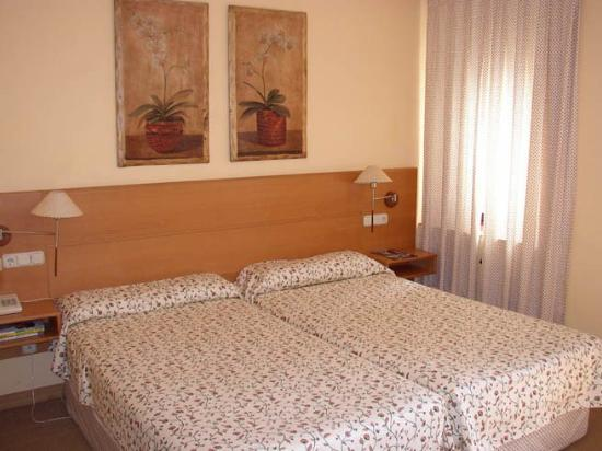 Hotel Ribera de Duero: Guest Room