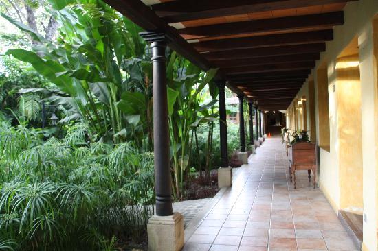 Hotel Las Farolas: le jardin