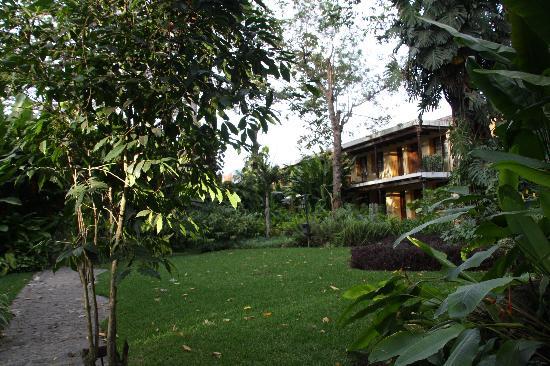 Hotel Las Farolas: autre vue du jardin