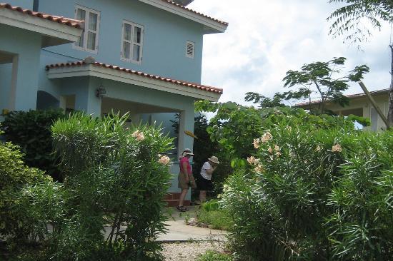 Carribean Club Bar and Restaurant: On The Grounds