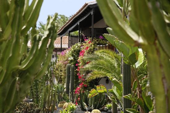 Seaside Grand Hotel Residencia : Garden View