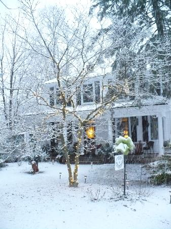 Copper Dreams Bed and Breakfast: Copper Lane ready for Ice Wine Festival