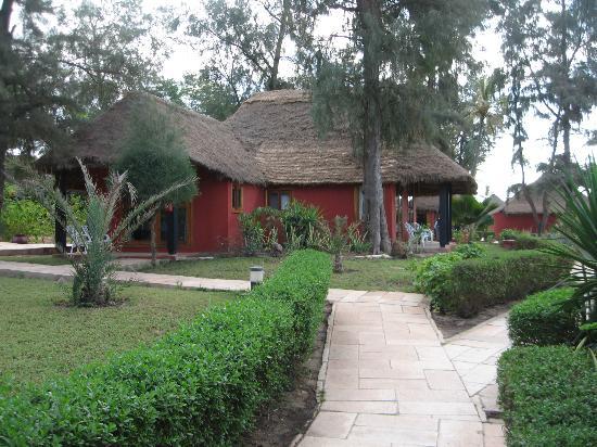 Le jardin photo de lookea royal baobab la somone for Baobab jardin