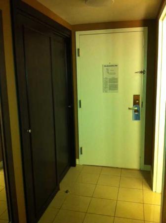 Hilton St. Louis Airport: Door and room floor