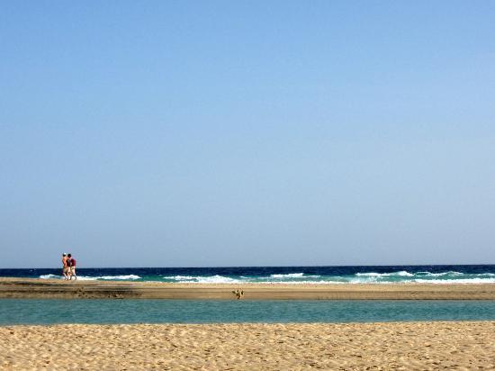 Sotavento Beach : one of the sandbars