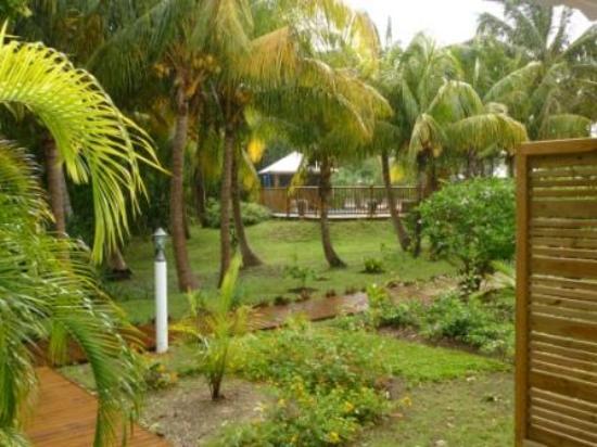 Jardin tropical sous la pluie picture of domaine de la for Jardin tropical guadeloupe