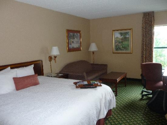 Hampton Inn Freeport/Brunswick : room