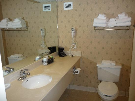 Hampton Inn Freeport/Brunswick : bathroom