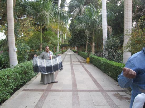 Aswan Botanical Garden: Nice walkways