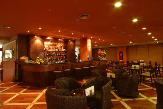 Hotel Termes de Montbrio - Resort Spa & Park: Bar