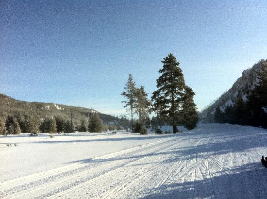Bullwinkle's Saloon and Eatery: Snow mobile trails in Yellowstone