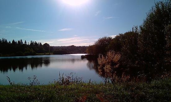 Domaine de la Plagnette : le lac