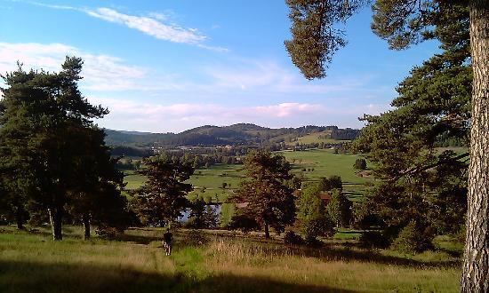 Domaine de la Plagnette: vue depuis la montagne au dessus