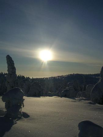 Hotelli Samperin Savotta : Le soleil durant la rando motoneige à 14h