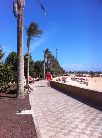 the beach & walk