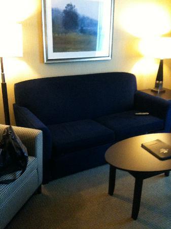 Homewood Suites by Hilton London Ontario: Nice