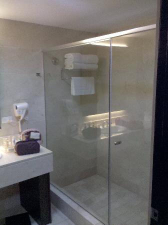 Wyndham Garden Panama City: Otimo banho