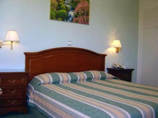 Oasis Hotel Apartments: Guest Room