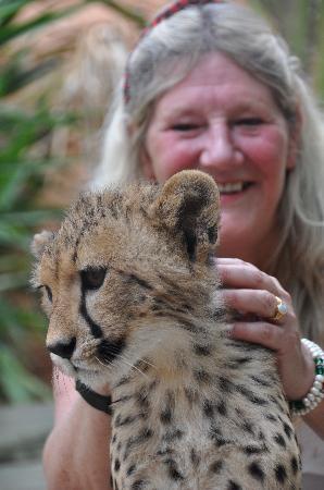 Oudtshoorn, Sudáfrica: totally smitten