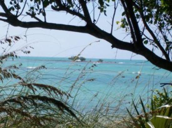 Bahia Honda State Park and Beach : The mini island on the secluded beach...