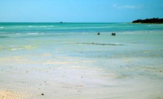 Bahia Honda State Park and Beach : Sandbar over the little bridge
