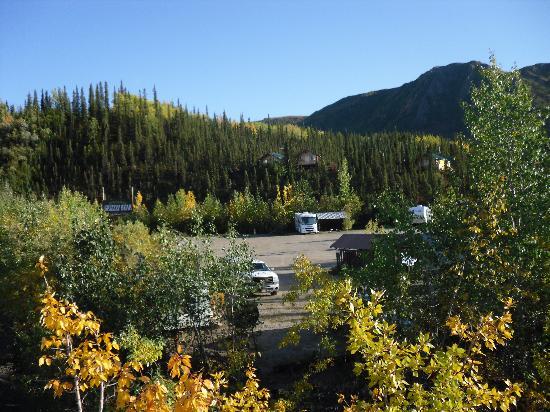 Denali Grizzly Bear Resort: il complesso visto dalla strada