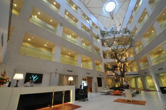 Avalon Courtyard: Lobby