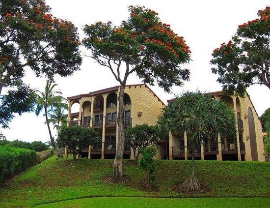Aston Maui Hill: units