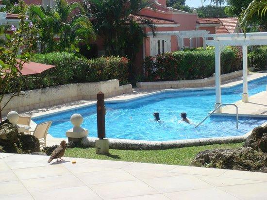Kings Beach Village: view from the veranda