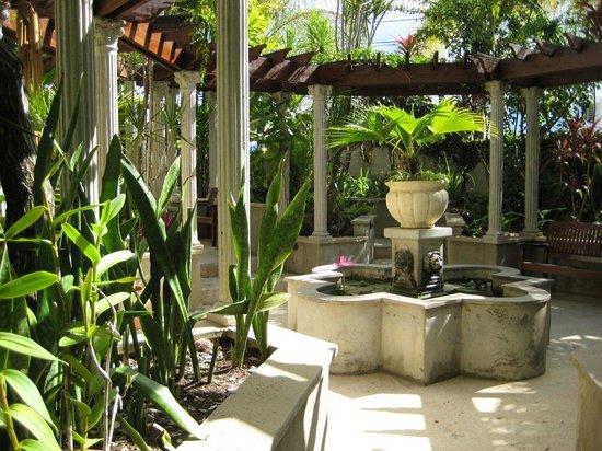 Blue Boy Inn: Front garden