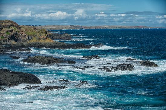 The Nobbies Centre: Shoreline to Bass Strait