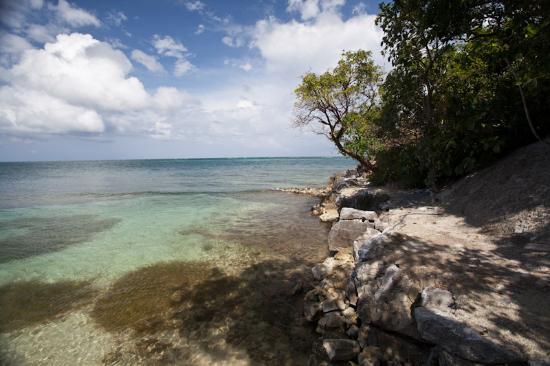 Paya Bay Resort: Clear Warm Water