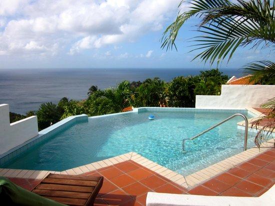 Windjammer Landing Villa Beach Resort : Our plunge pool
