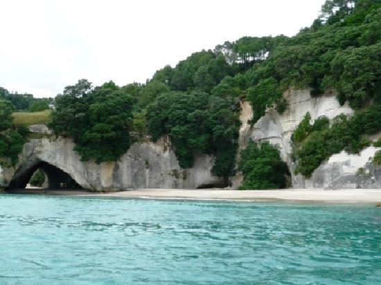 Cathedral Cove Bed and Breakfast: Cathedral Cove Coastline