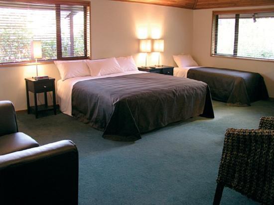 Quality Hotel Marlborough: Standard Room