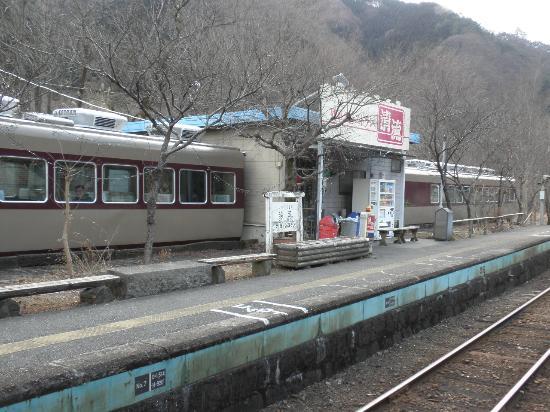 Kanto, Japan: 東武特急の車両を利用したレストラン(神戸駅)