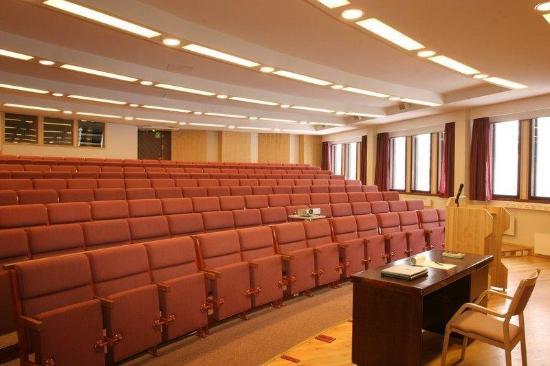 Lapland Hotel Riekonlinna: Auditorium
