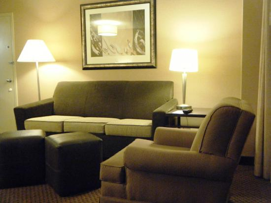 Embassy Suites by Hilton Chicago - Lombard/Oak Brook: Sitting Area
