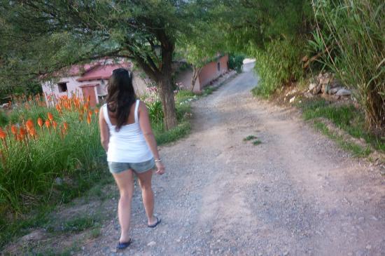 Cerro Chico: Camino a las cabañas