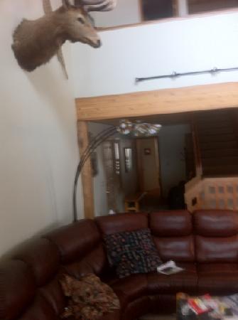 Beaverhead Condos: living room