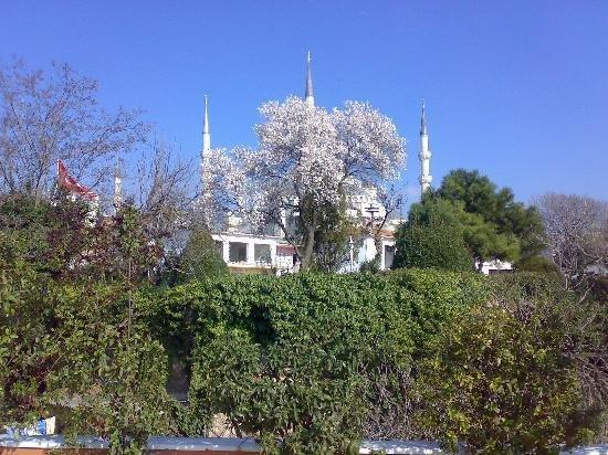 Tashkonak Hotel: Blue Mosque Viewed From Breakfast Area