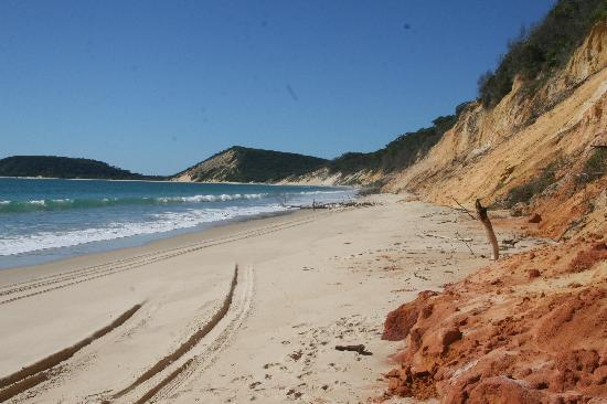 Trailblazer Day Tours: Cooloola National Park