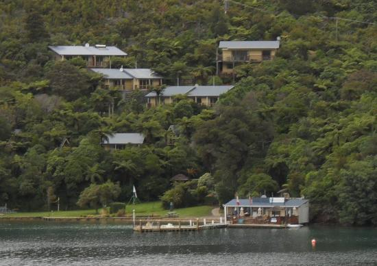 ‪بونجا كوف: Punga Cove Resort from Queen Charlotte Track‬