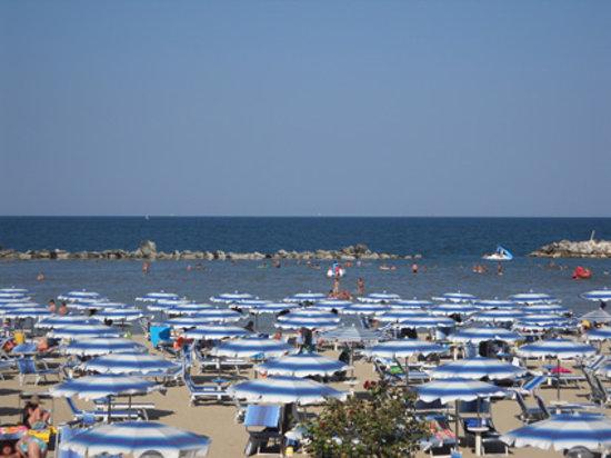 Spiaggia viserba rimini bild von beach egisto 38 viserba tripadvisor - Bagno 38 rimini ...