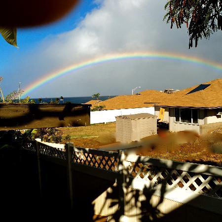 Maui Garden Oasis: christmas day