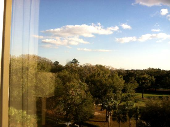 Hilton Ocala: Ocala Hilton, 6th Floor, Pool View