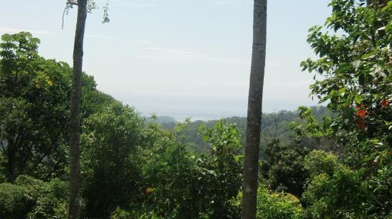 Rancho DiAndrew 사진