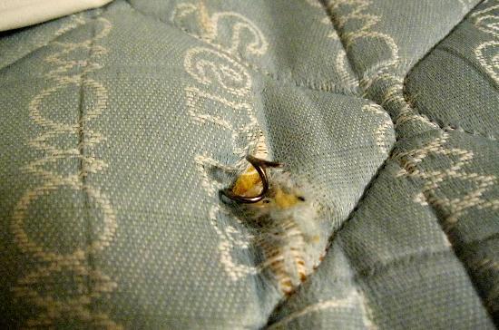 Super 8 Arlington East: Spring sticking out of mattress